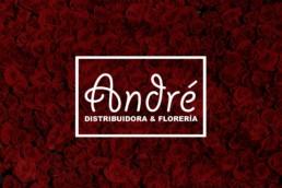 Diseño de Imagen e Identidad corporativa de floristería en bucaramanga